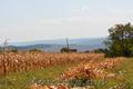Teren de 28 ari p/u constructii,  r. Orhei,  satul Teleseu